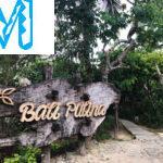 Кофейная плантация на Бали, дегустация кофе Лювак